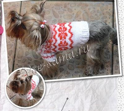 свитерок для собаки