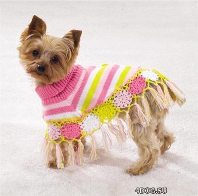 Для таких пород, как голая мексиканская, или йоркширский терьер, просто  необходима одежда для собак. Цена у нас находится в разумных пределах,  поэтому товар ... a3ae6b884ab
