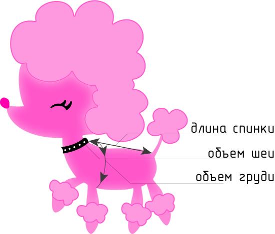 Таблица размеров одежды для собак