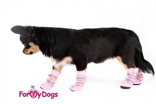 Ботиночки для собаки своими руками фото